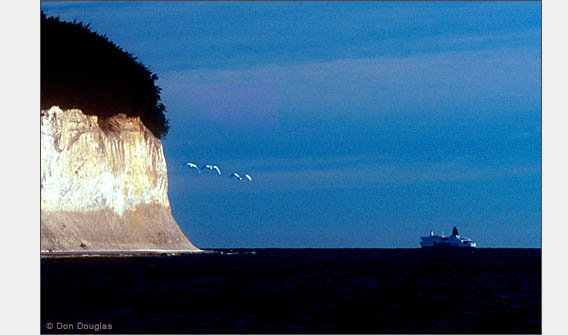 Swans fly by chalk cliffs as a ferry steams toward Sweden.